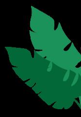 Planta NOSOTROS